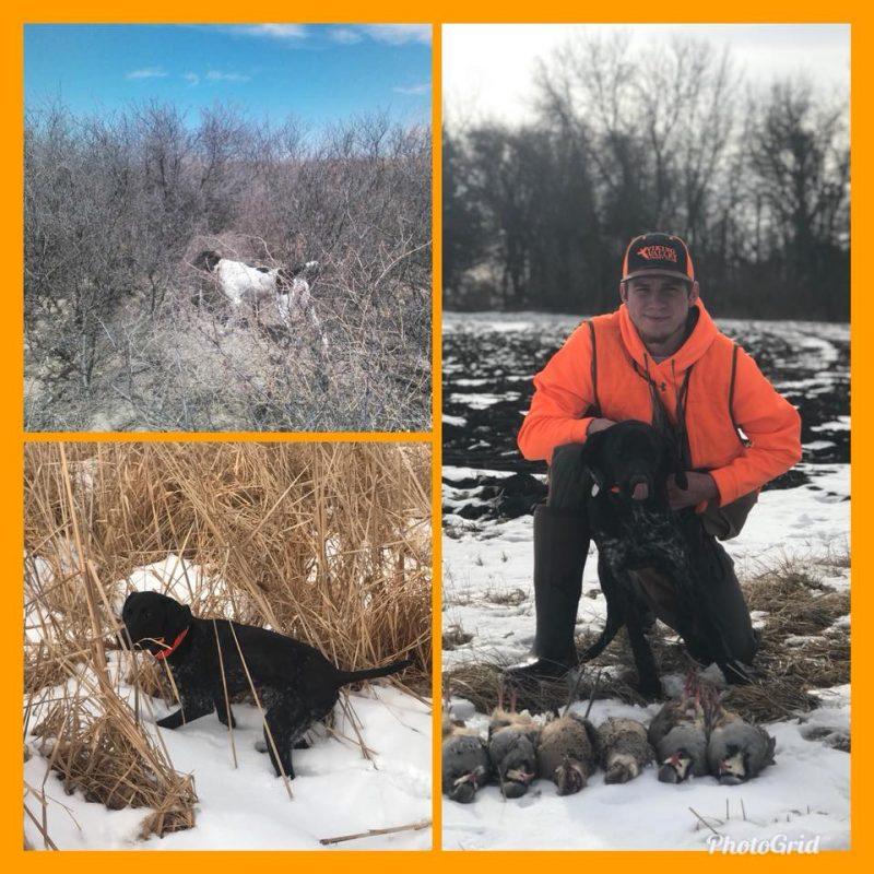 Hunters Ridge Kansas: Oakdale Ridge Hunting Preserve